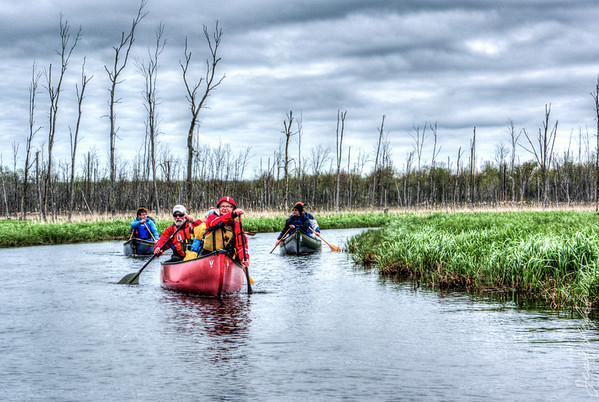 Minesing_Swamp_May2013 (99 of 263)_HDR