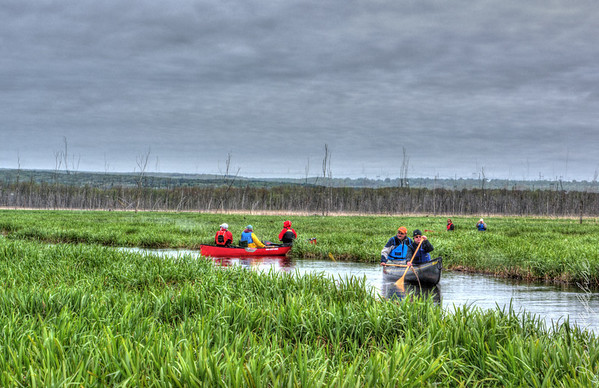 Minesing_Swamp_May2013 (115 of 263)_HDR