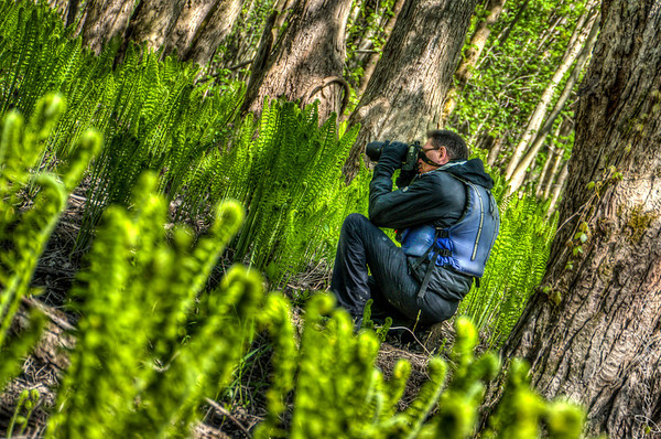 Minesing_Swamp_May2013 (231 of 263)_HDR