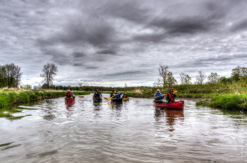 Minesing_Swamp_May2013 (13 of 263)_HDR