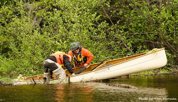 Darn beaver dams - not a canoe trip without beaver dams!