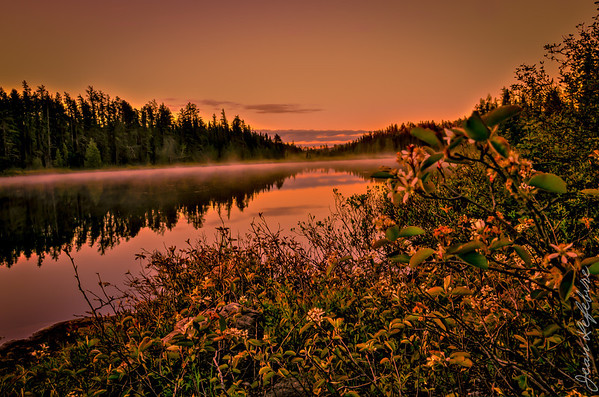 Temagami Sunrise - Alexander Lake