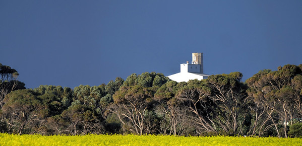 Silos and Canola
