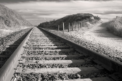 Tracks - Near Bean Hollow California USA