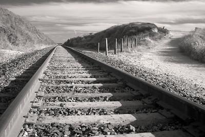 Tracks - Near Bean Hollow California USA