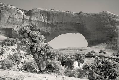Wilson Arch - Moab - UTAH