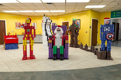 Canstruction_2019_029