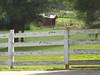 Arbor Hill Farms Canton GA (4)