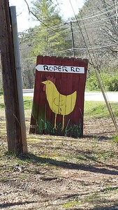 Roper Road Canton Georgia (8)