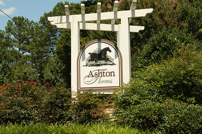 Homes In Canton Georgia (4)