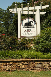 Homes In Canton Georgia (5)