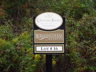 Birmingham Estates Canton (16)