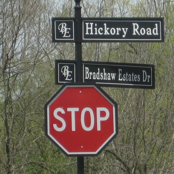 Bradshaw Estates, Canton Ga (2)