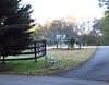 Braswell Farms Canton Georgia (4)