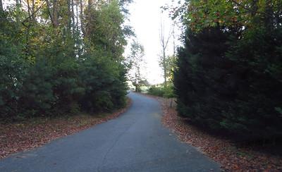 Braswell Farms Canton Georgia (9)