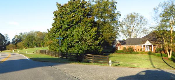 Braswell Farms