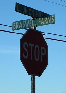 Braswell Farms Canton Georgia (10)