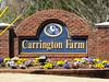 Carrington Farm-Canton GAMINEon smugmug