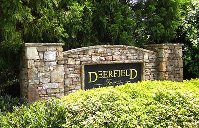 Deerfield Farms Canton GA Home Community (3)