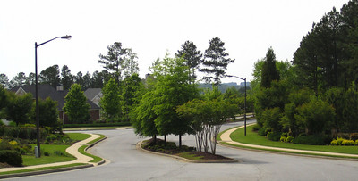 Governors Preserve Canton GA Estate Homes (3)