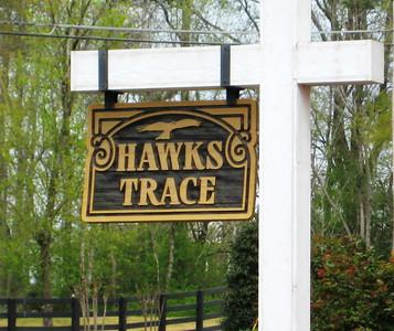 Hawks Trace Canton Ga (6)