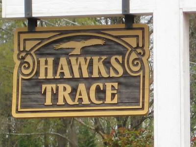 Hawks Trace Canton Ga (7)