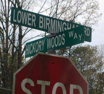 Hickory Woods Canton Georgia Community (41)