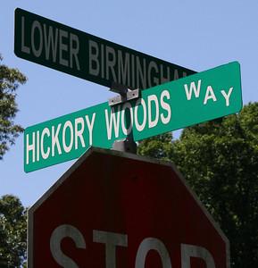 Hickory Woods Canton Georgia Community (38)
