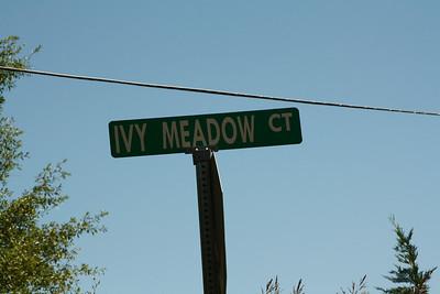 Ivy Meadow Cherokee County Canton GA (2)