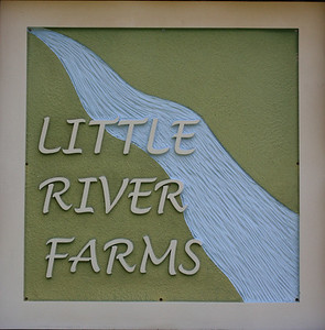 Little River Farms Canton GA Community (5)