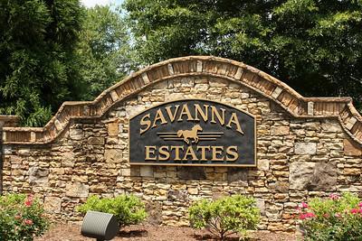Savanna Estates Neighborhood Canton Georgia (17)