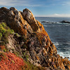 Point Lobos Coastline _MG_1592