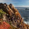 Point Lobos Coastline _MG_1592
