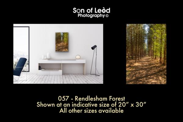 057 Rendlesham Forest