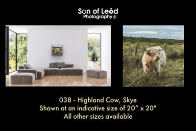 038 Highland Cow Skye