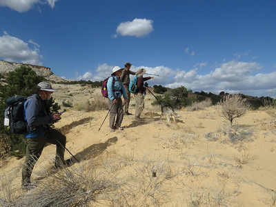 Andy, Susie, Doug and Sue figuring out the next few hundred yards.