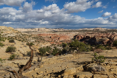 The route, inspired by this blog ( https://debravanwinegarden.blogspot.com/2017/10/cream-cellar-road-and-escalante-natural.html  ), is over sand and slickrock Navigating with a GPS seemed pretty essential.