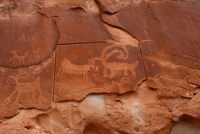 This same photo appeared in a recent issue of the NPCA magazine.  Some stupid and arrogant-beyond-words decided to try to saw this petroglyph out of the wall on which it was enscribed.  Of course, lots of other jerks had to try to write their names. or initials.