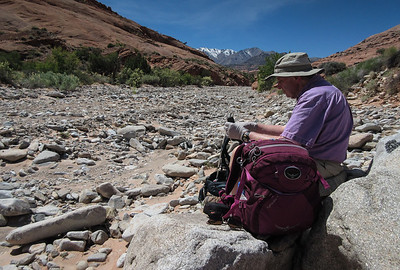 Despite the rest stop, we were able to climb back up thru the rocky stream bed faster than we descended.