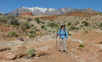 We've descended off the road cut for Hwy 276 into Trail Creek.  Kelsey, the guru of canyon hiking, indicates that this is an easy way of getting to Trachyte Creek Canyon.  Well, it may be the EASIEST, but it ain't easy, as we soon learn.