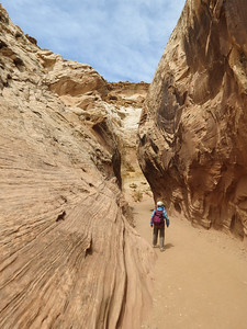 After lunch, we needed some more walking, so headed over to Little Wildhorse canyon, and its great narrows.  We have been here before (see https://twohikers.smugmug.com/Canyon-Country/BellLittleWildHorseCanyonMay10/ ) but it is always nice to revisit pretty places.