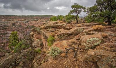 Canyon de Chelly Desert