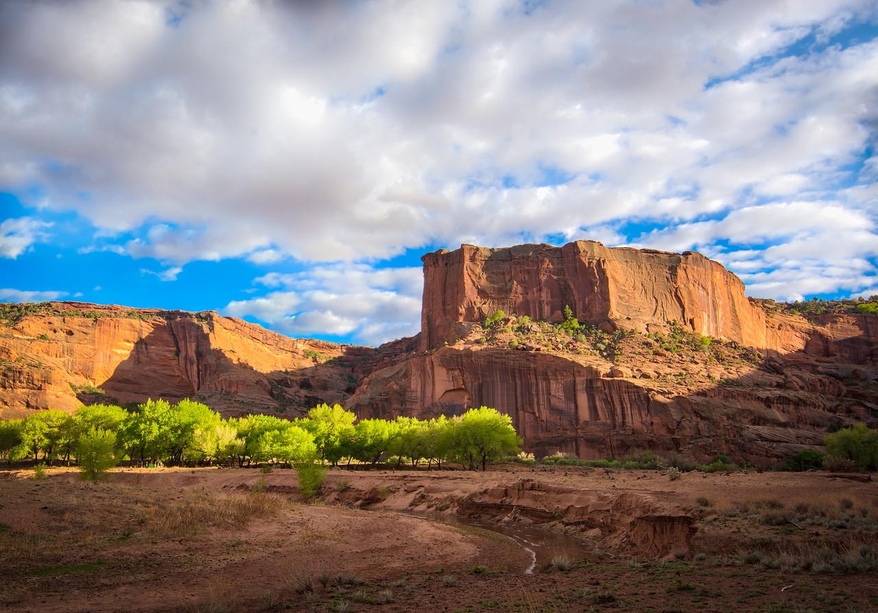 Canyon de Chelly Desert Farm