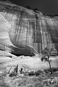 White House Ruin, Canyon de Chelly, View Three