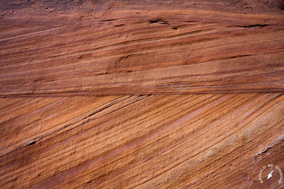 Canyon de Chelly sandstone detail