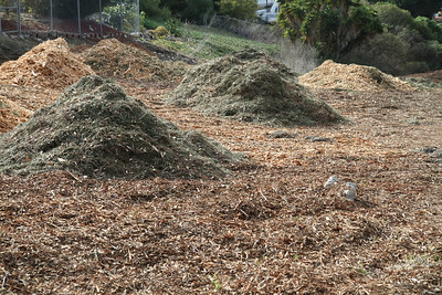 They have laid down quite a bit of mulch.