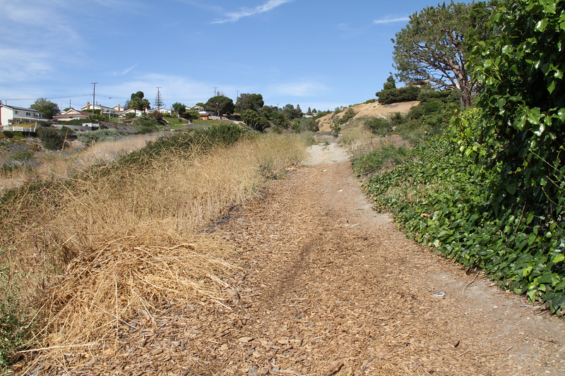 The middle path as seen from the Rock Park entrance.