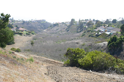 Photo Point 1. View of Canyon from Posey Way Entrance.