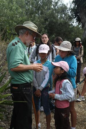 Examining a wild cucumber.