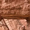 Ruins in Sipapu Bridge Canyon